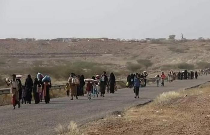اليمن   أرقام كارثية.. هذه نتائج حرب الحوثيين على حجور