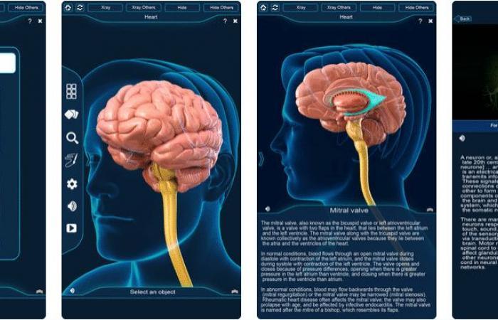 5 تطبيقات مفيدة لأطباء المخ والأعصاب