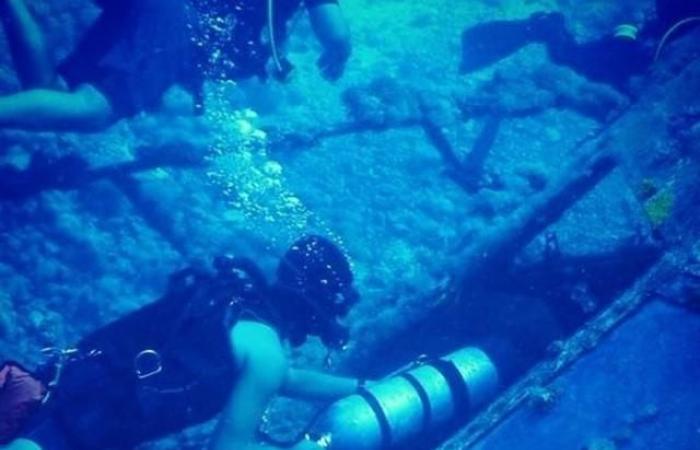 الخليح   قصة سعودي يغوص بحثاً عن أشهر السفن الغارقة