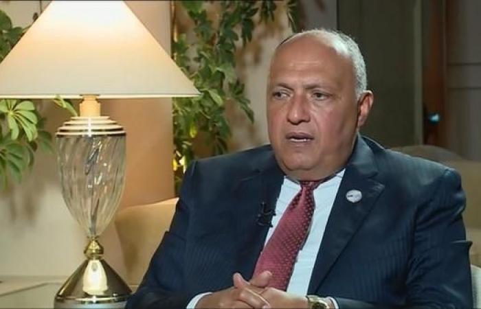 مصر | مصر توضح تصريح شكري: هذا ما طلبناه لعودة سوريا للجامعة