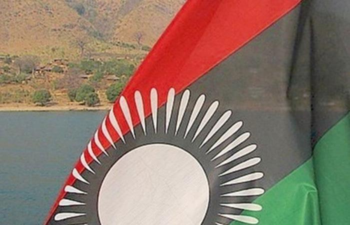 عقيقي: الجالية اللبنانية في مالاوي بخير