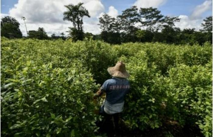 مقتل ثلاثة عسكريين كولومبيين بانفجار عبوة ناسفة