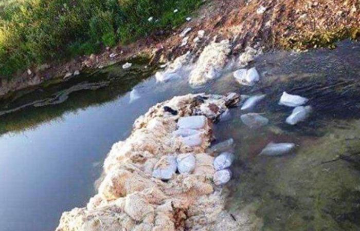 مجهولون يرمون طيورا نافقة بمجرى نهر الأسطوان.. والأهالي قلقون!