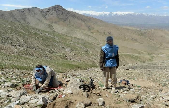 مقتل سبعة أطفال جراء انفجار قذيفة هاون عثروا عليها في أفغانستان