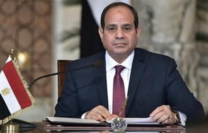 مصر | الرئيس المصري يلتقي رون وايدن عضو مجلس الشيوخ الأميركي