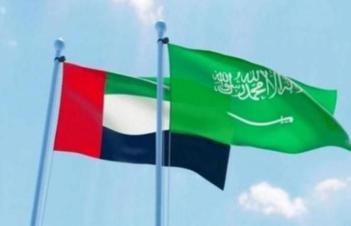 الخليح | الأمم المتحدة: السعودية والإمارات قدمتا 300 مليون دولار لليمن