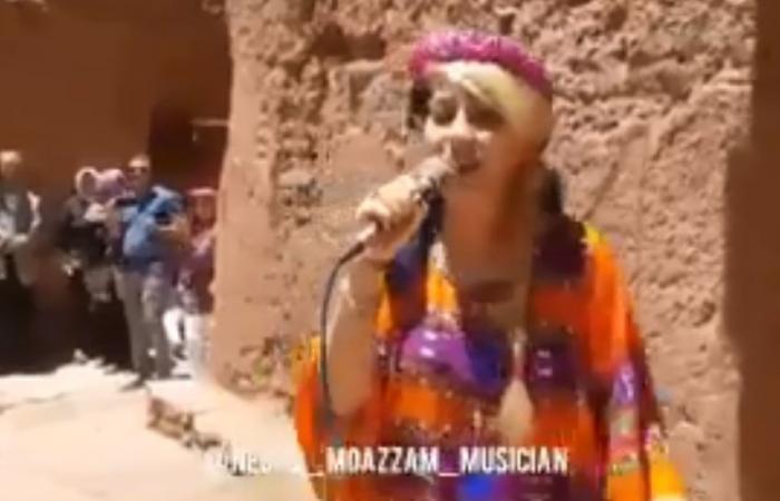التحقيق مع مغنية إيرانية غنّت أمام السياح وهي ترتدي زيا تقليديا