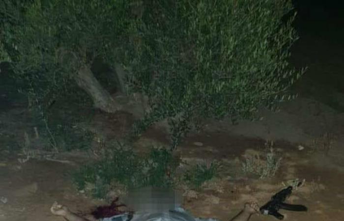 مصر | مصر.. تصفية متورطين جدد في هجوم سيناء