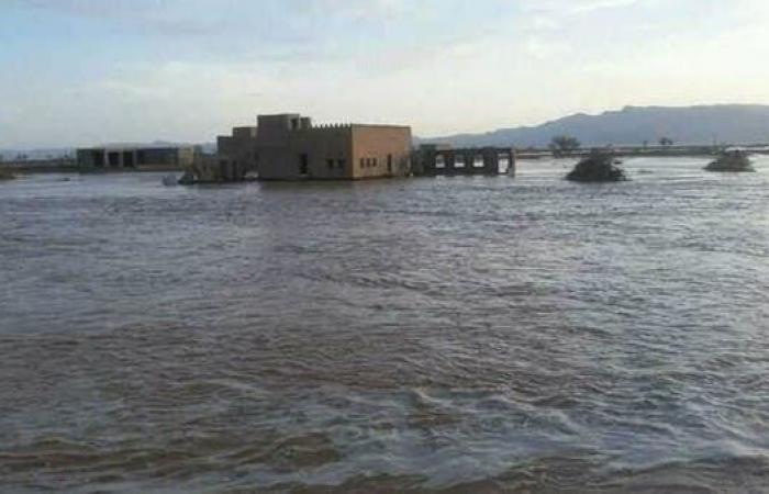 اليمن | وزير يمني يوجه نداء: تدخلوا بسرعة لإنقاذ السكان
