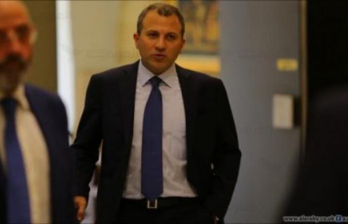 آخر صيحات الوزير جبران باسيل: 'الانتماء اللبناني جيني'