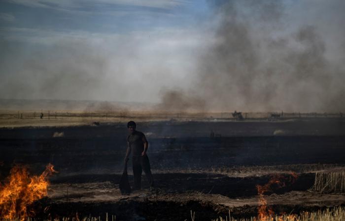 سوريا | النار تلتهم قمح الشمال السوري.. طار الحصاد