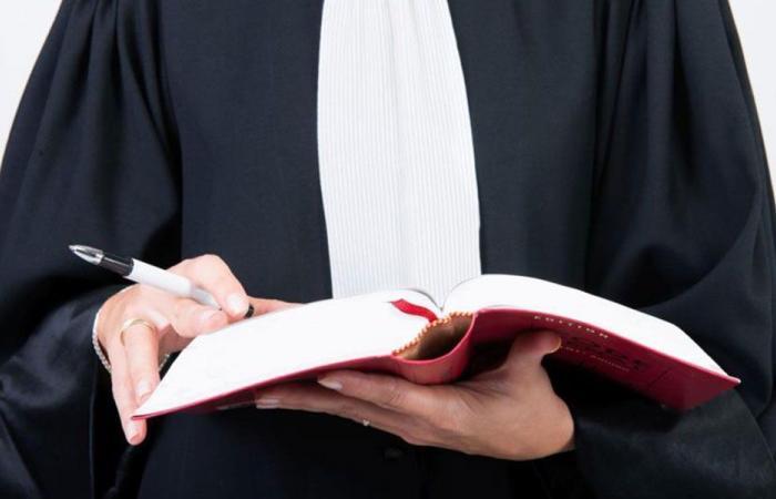 ضمانات المحامين لأداء مهامهم.. الطريق الصحيح لتحقيق العدالة