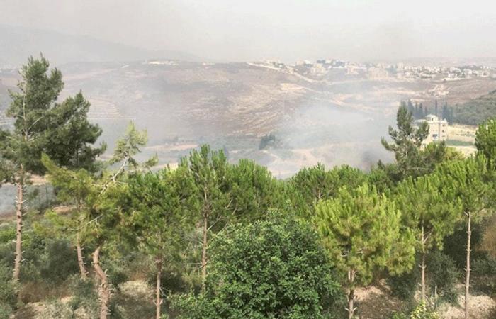 حريق كبير يلتهم الاشجار والمزروعات في النبطية