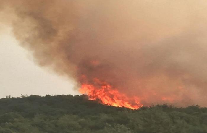 اهماد حريق بزال في عكار