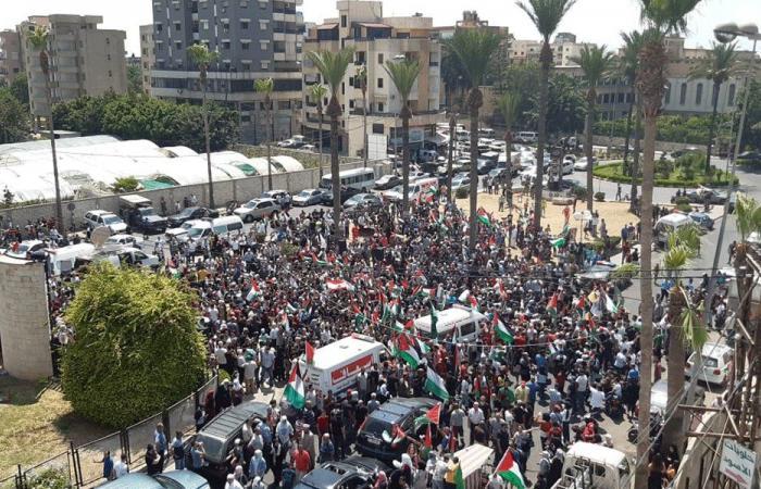 """اعتصامات في صيدا وعين الحلوة احتجاجا على قرار """"العمل"""""""