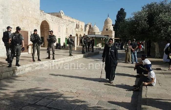 """فلسطين   """"جماعات الهيكل"""" تدعو لاقتحامات واسعة للمسجد الأقصى غدا"""