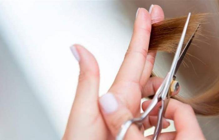 اليك أفضل 3 ماسكات طبيعية لعلاج تقصف الشعر... اكتشفيها!