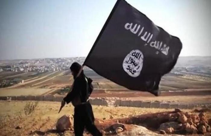 سوريا | البنتاغون: داعش عاود الظهور بسوريا وعزز قدراته بالعراق