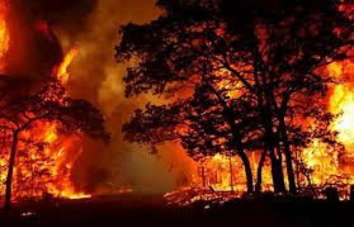 احتواء الحريق في جزيرة كناريا الكبرى في أرخبيل الكناري الإسباني