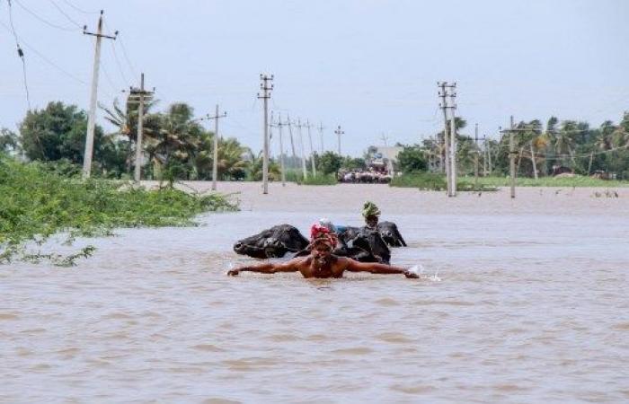 عدد ضحايا الأمطار الموسمية في الهند يزيد عن 200