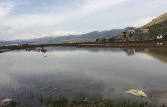 """المياه الجوفية في دير الأحمر ملوّثة بالبراز… و""""لا حياة لمن تنادي"""""""