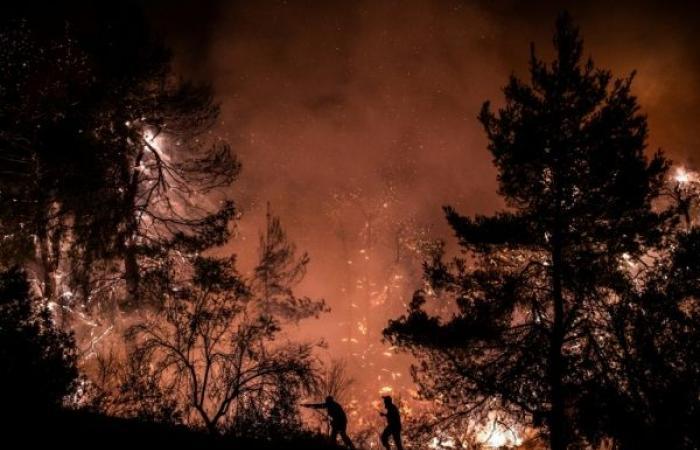 شاهد: كارثة بيئية في جزيرة إيفيا اليونانية