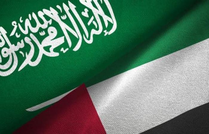 الخليح | 7 لجان مشتركة لتحقيق التكامل السعودي الإماراتي