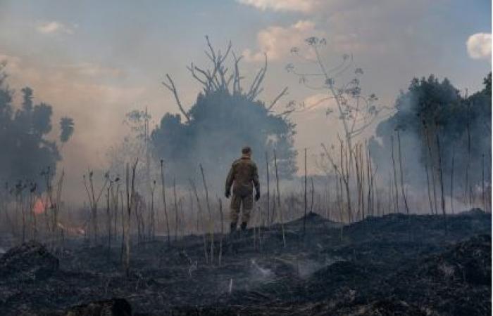 الحرائق ما زالت مستعرة في غابات الأمازون