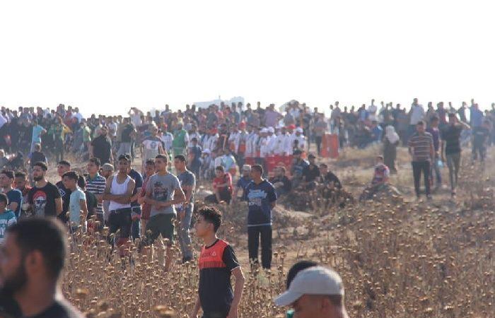 فلسطين | اعتقال 3 شبان بعد اجتيازهم السياج الحدودي شرق القطاع