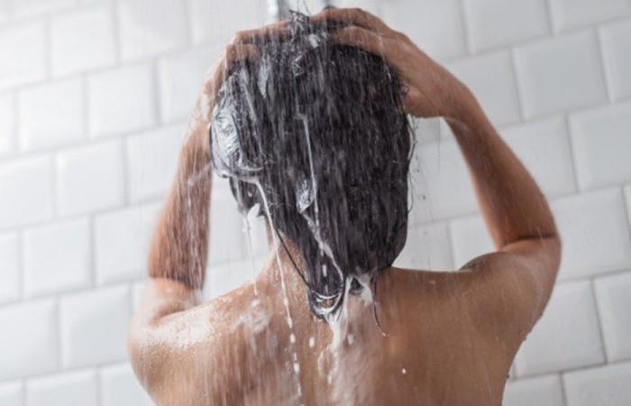 بالفيديو: دب يأخذ استراحة في حمامٍ للنساء!