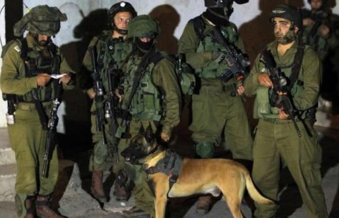 فلسطين | الاحتلال يفتش مساكن وخيام المواطنين شرق يطا