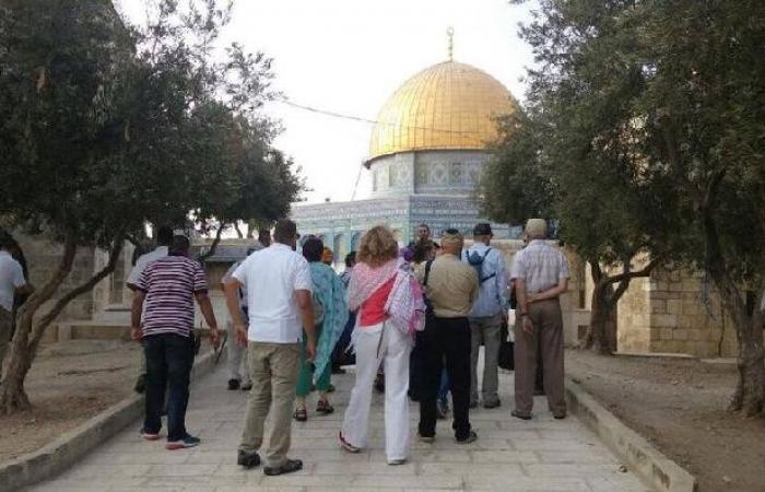 فلسطين   448 مستوطنًا اقتحموا باحات الأقصى الأسبوع الماضي