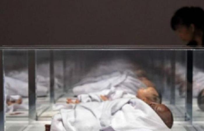 فلسطين | ارتفاع عدد سفراء الحرية إلى 80 طفلاً..