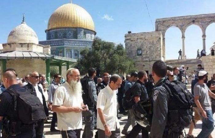 فلسطين   الأوقاف تستنكر الإقتحامات المتكررة للمسجد الأقصى