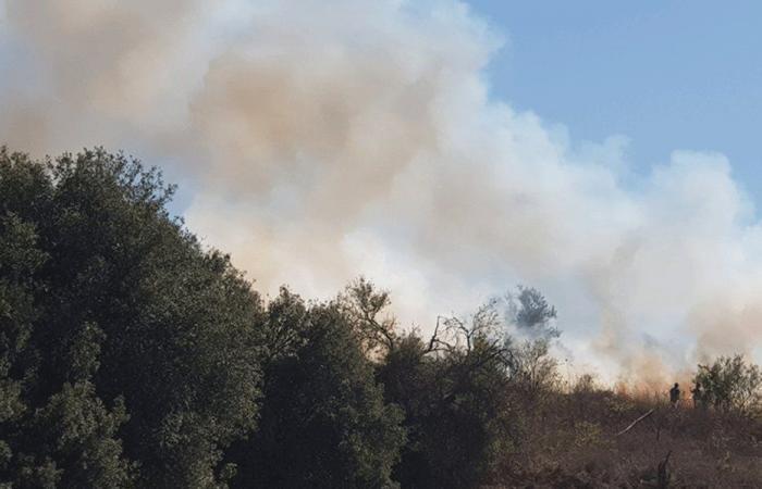 حريق في بيت لهيا-راشيا الوادي