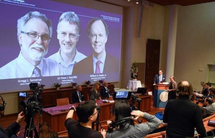 نوبل للطب لـ3 علماء اكتشفوا كيفية تأقلم الخلايا مع الأوكسجين