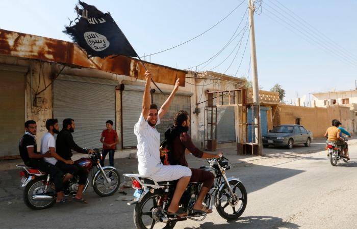سوريا | مقاتلو داعش الأجانب يؤرقون أوروبا.. خطة لإخراج الآلاف
