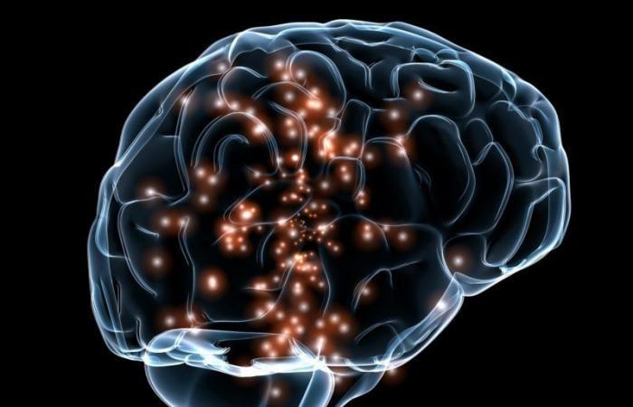 شبكة النمط التلقائي: اختبارنا للجمال يرتبط بمنطقة غير متوقعة من الدماغ