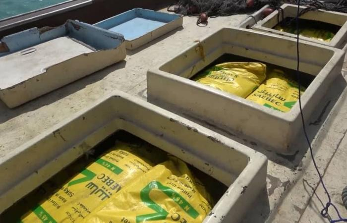 اليمن | الحوثيون يحاولون تهريب 100 طن أسمدة لصناعة المتفجرات
