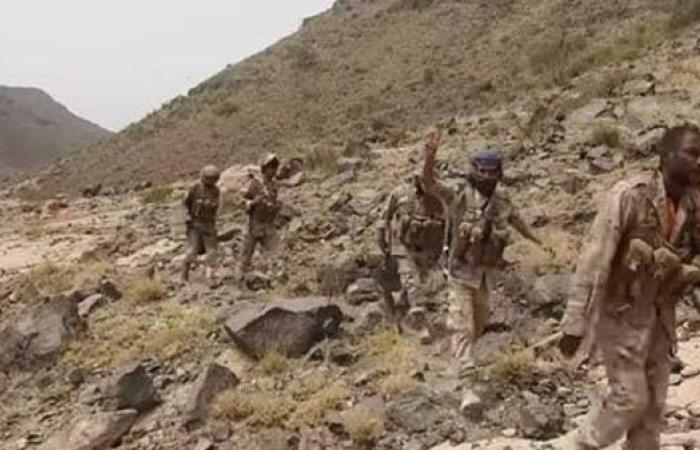 اليمن | الجيش اليمني يحرر مواقع جديدة في الجوف