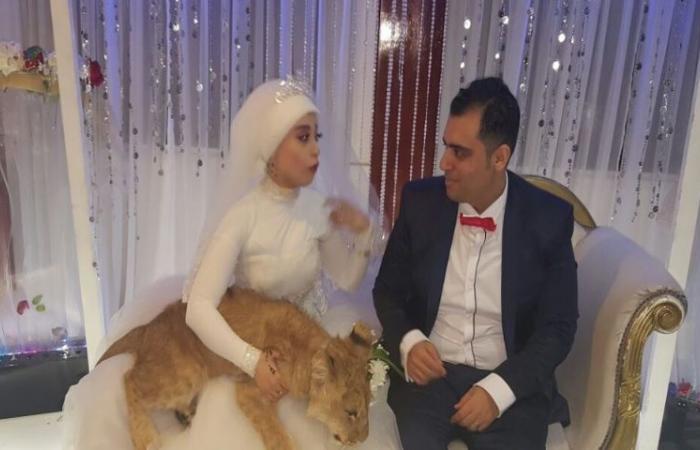 """عروس تُفاجئ عريسها بـ """"مكتوبة ليك"""" في زفافهما.. هكذا تفاعلت إليسا!"""