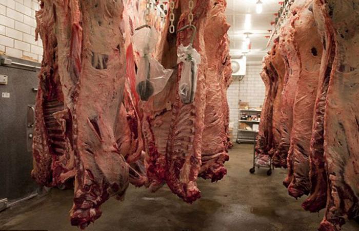 نقابة تجار اللحوم: لإعادة التسهيلات المصرفية لزوم تجارتنا