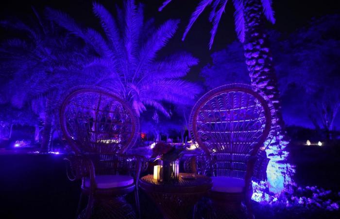 الخليح   حديقة مضيئة تجذب زوار موسم الرياض.. لهذا السبب