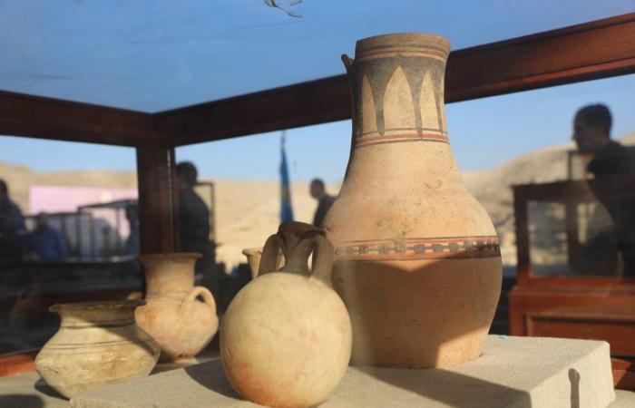 """مصر   مصر تكشف عن """"متحف كامل"""" يضم مومياوات أسود وتماسيح وطيور"""