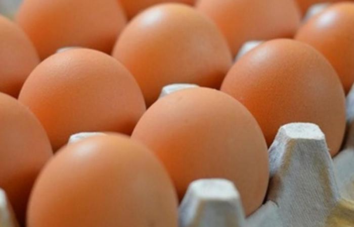 'كرتونة البيض'.. قصّة الابتكار الذي يحقّق 8 مليارات دولار!
