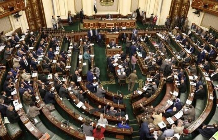 مصر   برلمان مصر: اتفاق أردوغان السراج جنون لن نسمح به