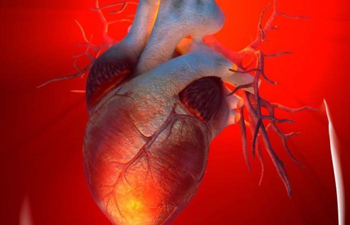 الناجون من نوبات قلبية أكثر عرضة لخطر الإصابة بالسرطان