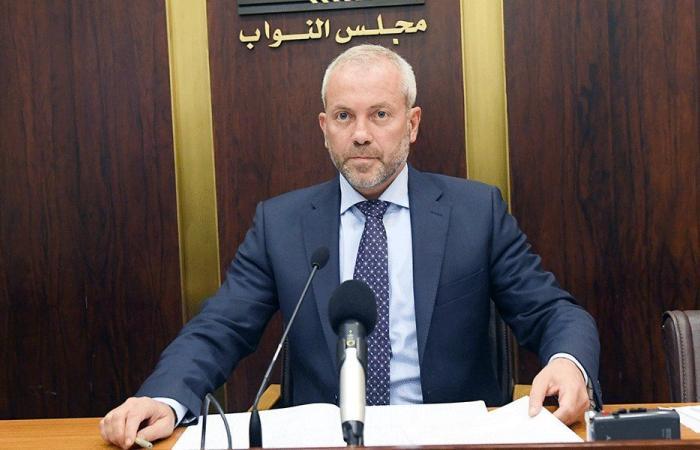 حبشي لبستاني: طلبنا معلومات حول الكهرباء ليس من باب النكد السياسي