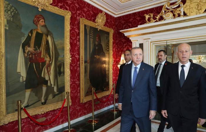 أردوغان يتسبب بمساءلة وزيري الدفاع والداخلية أمام برلمان تونس
