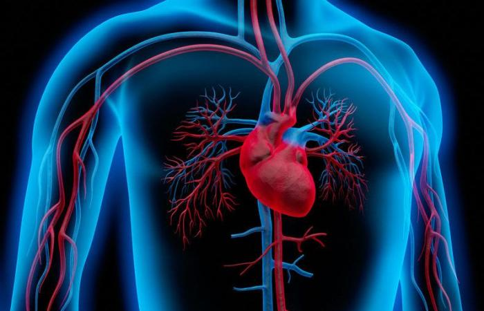 الصدمة القلبية: الأسباب والأعراض والتشخيص والعلاج